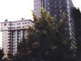 云南省红十字会医院